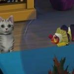 TS3_PETS_PC_1ST_LOOK_CAT_FISH_01