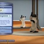 TS3_Pets_Console__siamese_playful