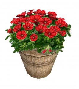 plantpottedflower_perennials_